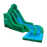 China Emerald Green Frog Fun Water Slides , Inflatable Double Rush Slip Wet Slide wholesale