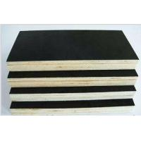 China 1200*1800*17mm F17 brown phenolic film faced plywood hot sale in Australian wholesale