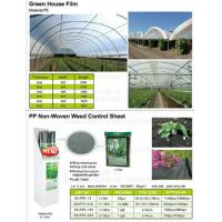 China Green house film, pp non-woven weed control sheet,mulch film w/pull-off hole,plant protect sleeve film w/hole, micro hol wholesale