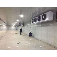 China Fire - Proof Customized Cold Storage Room With Swing / Sliding Door wholesale