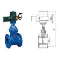 China RVEX electric resilient seated gate power station valve grey cast iron 50 - 400mm wholesale