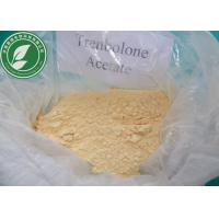 China USP Standard Raw Steroid Powder Trenbolone Acetate For Weight Loss CAS 10161-34-9 wholesale