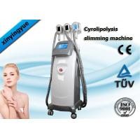 China Fast Body Shaping Cryolipolysis Slimming Machine , Slimming Beauty Equipment on sale
