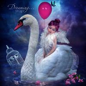China diamond rhinestone decorative painting pasted diamond painting angel & swan embroidery art wholesale