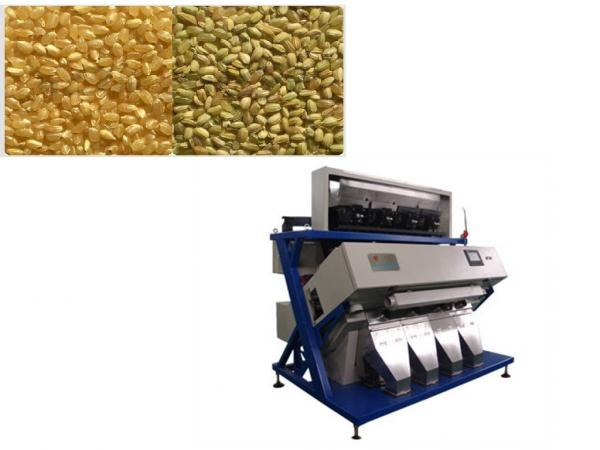 Are Mung Beans Good For Dogs