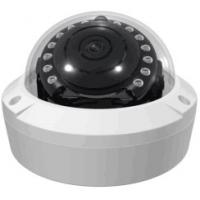 China 2.0MP 360degree IP panoramic IR Camera with dewarping and tripwire function wholesale