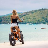 China 20 Inch 48v 500w Bafang Motor Folding Fat Tire Electric Bike With LCD display on sale