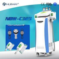Cryolipolysis adelgazamiento dispositivo Coolsculpting grasa congelación máquina adelgazante