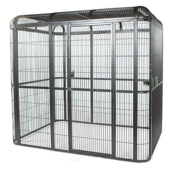 Lizard Cage Images