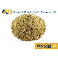 China Full Fat Organic Fish Meal Fertilizer / Food Grade Fish Meal Enhance Poultry Nutrition wholesale