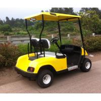 China 2 seaters gas powered golf cart,cheap golf cart for sale wholesale