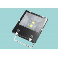 China Custom Design IP65 Large Outdoor Led Flood Lights 100W For Landscape Lighting wholesale