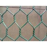 Galvanized or PVC coated hexagonal wire mesh