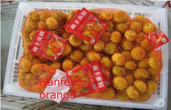 anavar 50mg orange