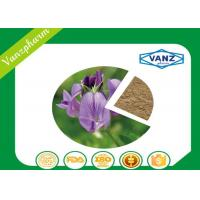 China Alfalfa Extract Natural Herbal Extracts For Lowering Blood Pressure wholesale
