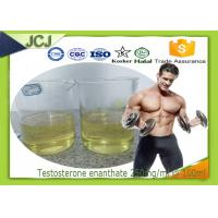China Testosterone Enanthate Anabolic Steroids for Muscle Building 250mg / ml * 100ml wholesale