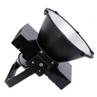 China IP65 COB 500w Industrial High Bay Lights Powerful Project Engineering Tower Crane wholesale