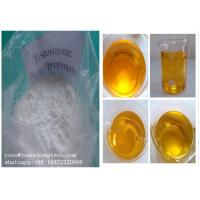 Buy cheap Testosterone Phenylpropionate,99% Raw Steroid Anabolic Hormone Powders for bodybuilding in cutting cycle from wholesalers