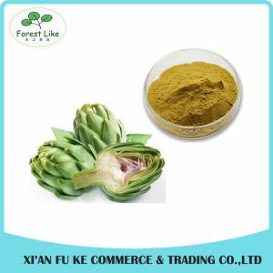 China Plant Extract 100% Natural Artichoke Extract / Cynarin 2.5% 5% wholesale