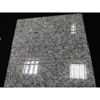 China Cheap Chinese Granite G602 Polished Grey Granite On Promotion wholesale