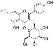 China Chemical Compound Astragalin  CAS no.: 480-10-4 For  Pharmaceutical Raw Materials on sale