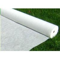China Customizable Density Spunbonded 100% Polyester Nonwoven Fabric on sale