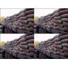 China Ordinary Portland Cement wholesale