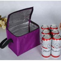 China Portable Ice Cooler Bag 6 Packs Bottle , Wine Ice Pack For Cooling Beer Juice wholesale