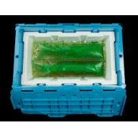 Non Toxic Lunch Box SAP Ice Gel Packs For Breastmilk Cooler Bag