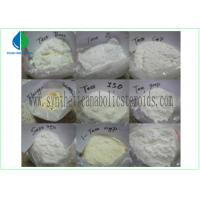 China Testosterone Isocaproate Male Muscle Enhancing Steroids CAS 15262-86-9 White Powder wholesale