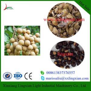 China High Efficiency Longan Fruit Processing Machine Longan Peeling Machine for drink making wholesale