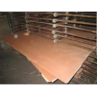 China commercial plywood bintangor plywood manufacturer China on sale
