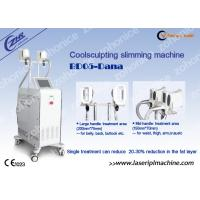 China Vertical Cryolipolysis Weight Loss Machine  Pain-free For Fat Removal wholesale