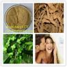 China 100% nature of morinda root extract sucy@chembj.com wholesale