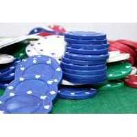 China 2012 Newly Poker Chip Blank wholesale