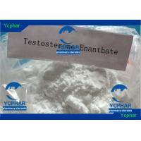China Testosterone Enanthate Nandrolone Steroid With Enanthate Ester CAS 315-37-7 wholesale
