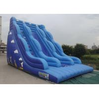 China Inflatable Bouncy Castle With Slide Blue Color Cartoon Characters Printed wholesale