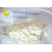 China Testosterone Enanthate supplier White Crystalline Muscle Building Steroid Hormones Powder Testosterone Enanthate wholesale