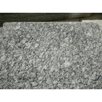 China Guangdong Silver Grey Granite Tiles Sea Wave Flower Granite Floor Tiles Granite Slabs wholesale
