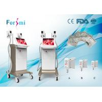 China Factory Price 4 Cryo Handles cryolipolysis cool body sculpting criolipolisis machine wholesale