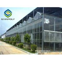 China Hermetic Agricultural Glass Greenhouse , Venlo Greenhouse Structure Aluminium Alloy Roof wholesale