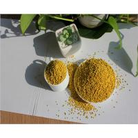 China China Bee Pollen Granules- 100% Pure Fresh Raw Bee Pollen wholesale