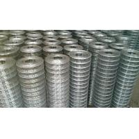 China 1/4 X 1/4 Building Reinforcing Welded Steel Mesh Hot Dipped Galvanized / Electrogalvanized on sale