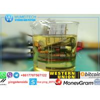 China Substance Testosterone Enanthate Injectable Steroids Test E / Test Enanthate 250 wholesale