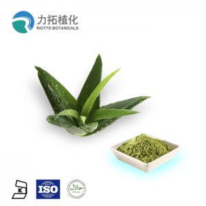 China Organic Plant Extract Powder Aloe Vera Extract Powder 10x 200x Emodin 98% wholesale