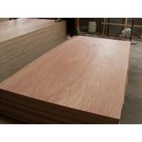 China china plywood supplier,commercial plywood manufacturer,good quality plywood on sale