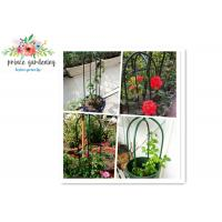 China Eco Friendly Solid Durable Green Ushape Pipe Flower Support Garden Plant Supports wholesale