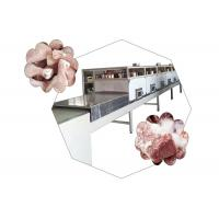 China Generator System Microwave Thawing Machine For Frozen Meat And Frozen Seafood wholesale