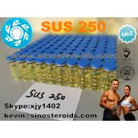 China Testosterone Sustanon 250 Four Mixed Injectable vials Finished Liquid for Bodybuilding Sus 250 on sale
