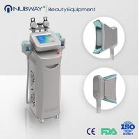 China 2017 Top Selling fat freeze Cryolipolysis Liposuction Machine for sale wholesale